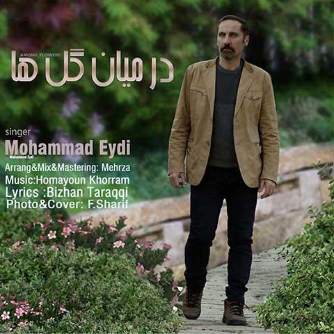 دانلود آهنگ محمد عیدی در میان گل ها