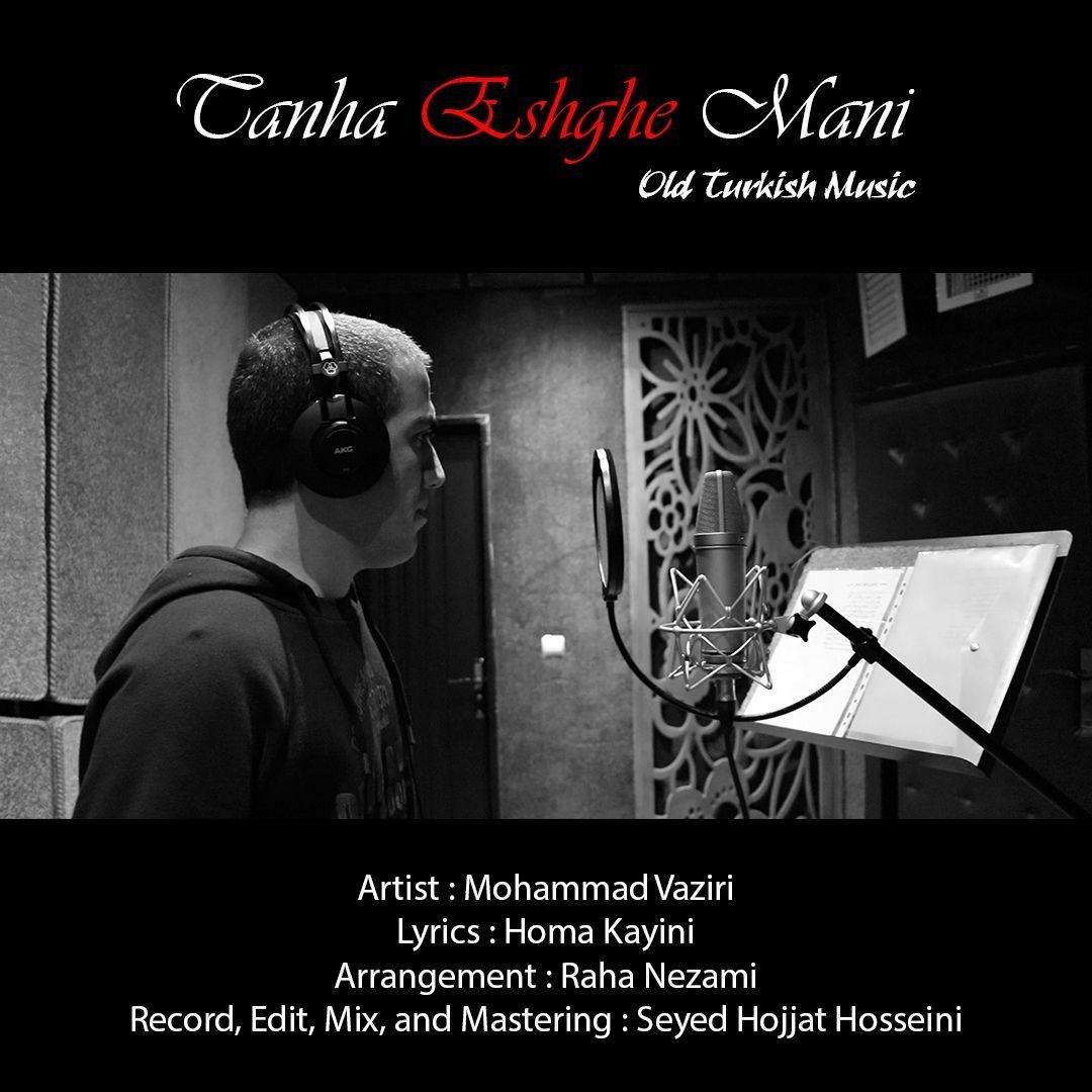 دانلود آهنگ محمد وزیری تنها عشق منی