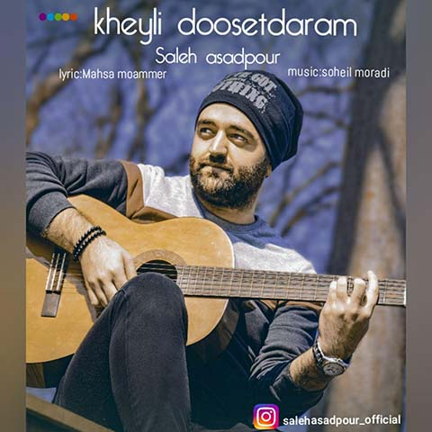 دانلود آهنگ صالح اسدپور خیلی دوست دارم
